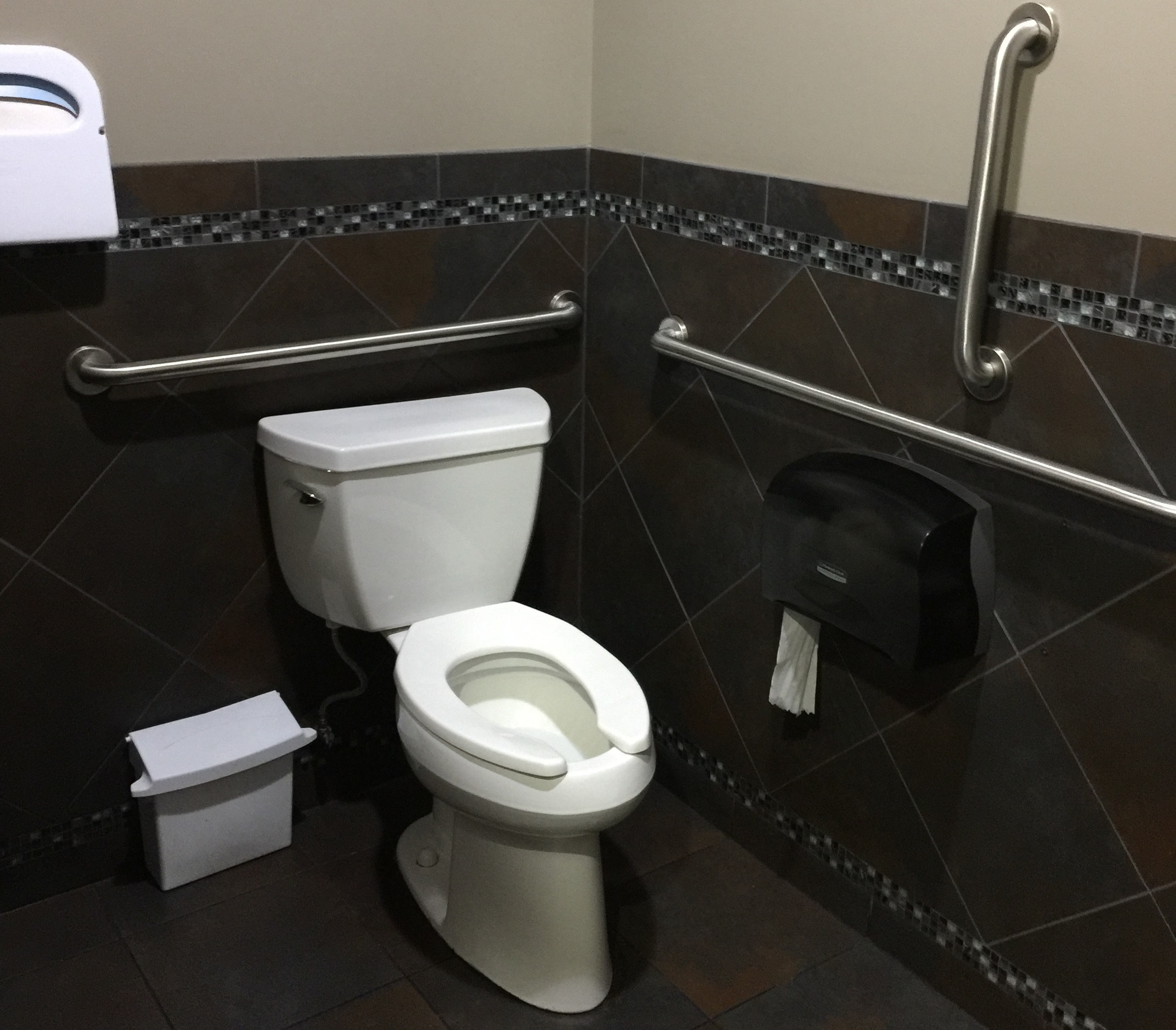Photo showing grab bars on the right of toilet